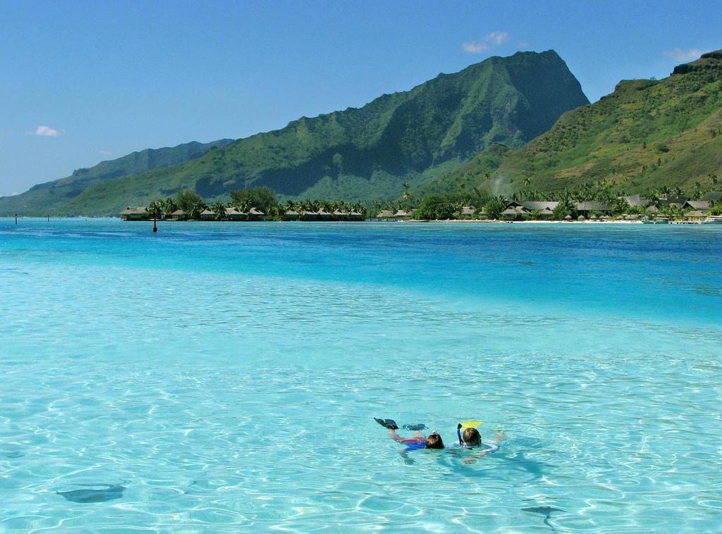 La Polynésie, un parfum de tiaré