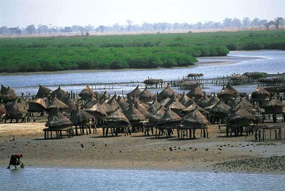 paysage du Sénégal
